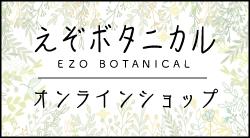 えぞボタニカル 北海道産カバノアナタケ茶オンラインショップ